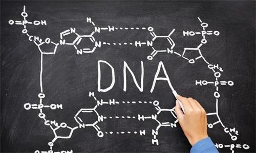 健康人要做基因检测吗?基因检测对疾病的影响