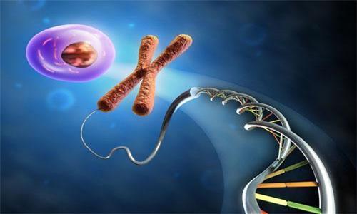 基因检测对癌症患者有多大价值?基因对癌症的作用
