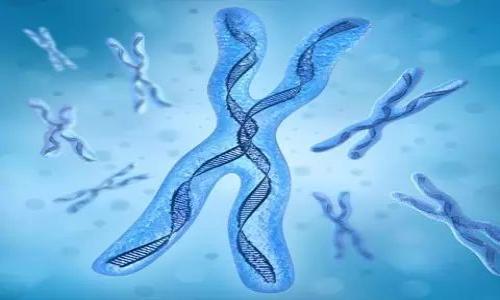 基因检测:精准医疗为癌症治疗新方向从基因突破