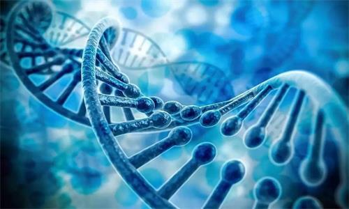 肿瘤好治吗?遗传性肿瘤基因检测