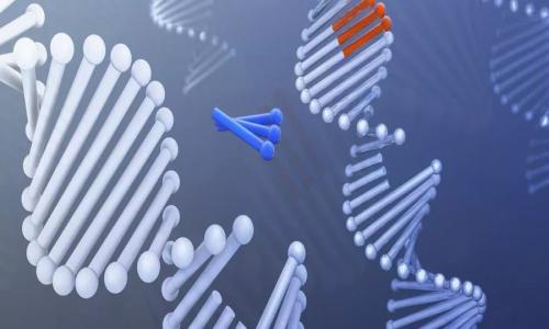 基因检测可以洞察患癌风险?基因检测提前锁定癌症